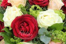 گل سفید و قرمز